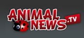 Animal News TV